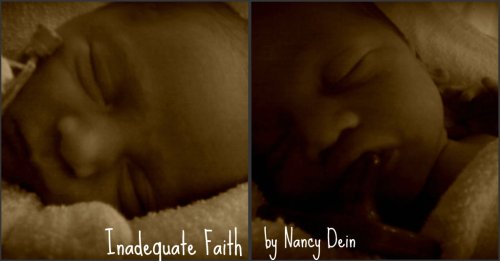 Inadequate Faith - Nancy Dein