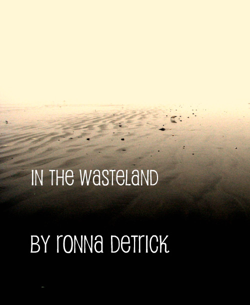 In the Wasteland - Ronna Detrick